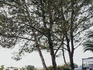 Quinta da Barreta 5
