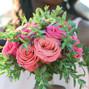 Flores à la Carte 4