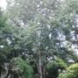 Quinta das Sentieiras 11