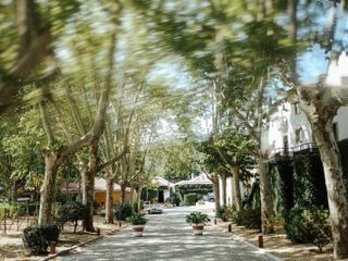 Quinta da Pacheca 3