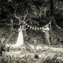 O casamento de Sónia Gomes e Quinta Fonte da Aranha 15