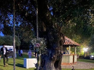 Iguarias do Tempo 1