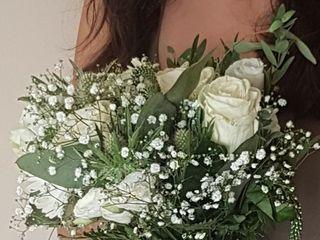 Sónia Sousa - Flores e Plantas 1