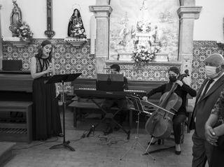Lotus Ensemble 2
