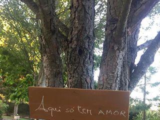 Quinta da Maria Neta 7