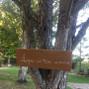 Quinta da Maria Neta 2