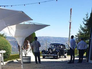Paraíso Douro 4