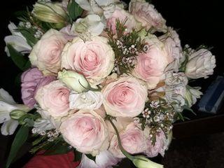 Pétalos - Flores e Artes 1