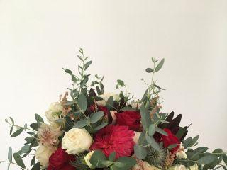 Convergências Florais 2