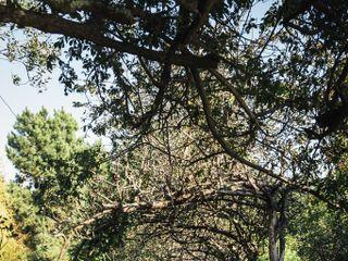 Quinta da Morgadinha 1