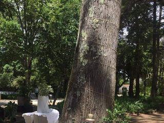 Quinta da Serra 2