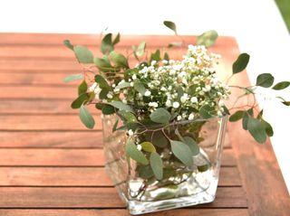 Flores do Bruno 4