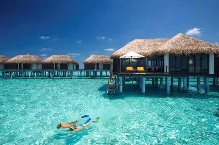 Lua de mel nas Maldivas - 3