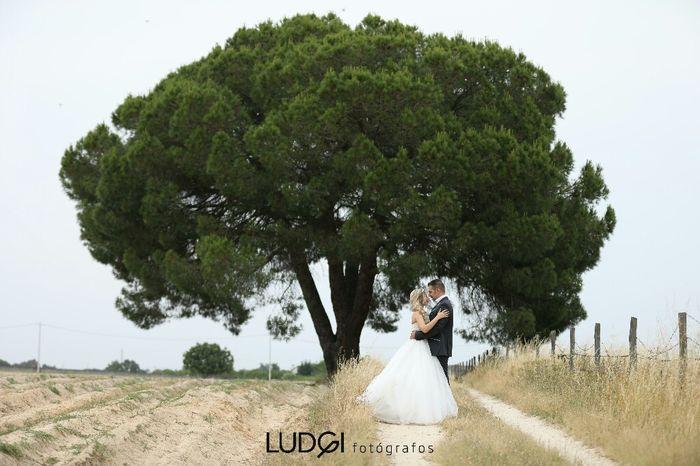 Partilha a foto mais bonita do teu casamento! - 1
