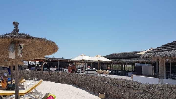 Djerba ou Hurghada? - 5