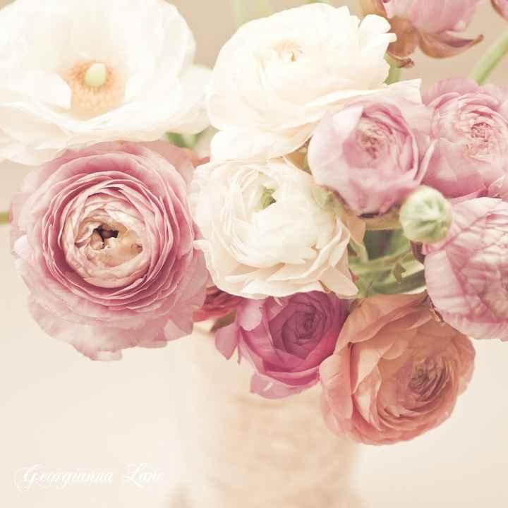 Nome da flor - 1