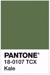 9e66ad33d Pantone 2017: Que tal um casamento verde Kale?