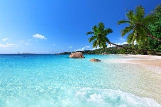 B. uma praia paradisíaca