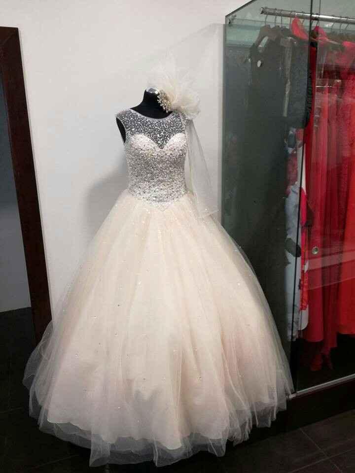 Apaixonada por um vestido! - 1