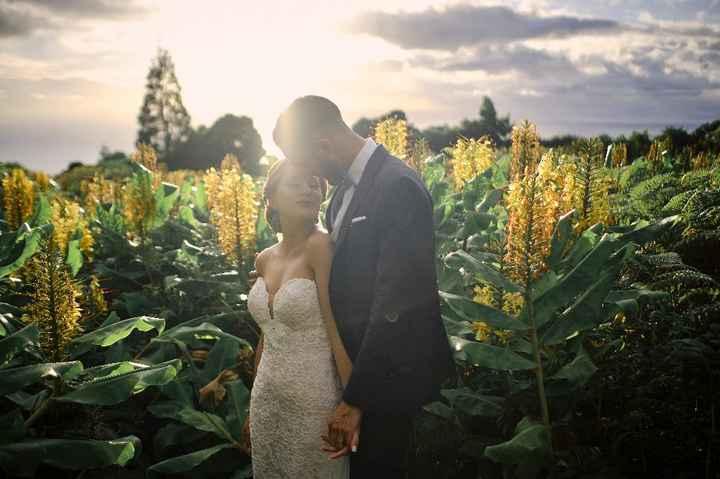 Fotografias do nosso casamento - 6