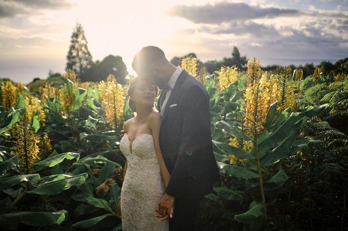 Fotografias do nosso casamento 8