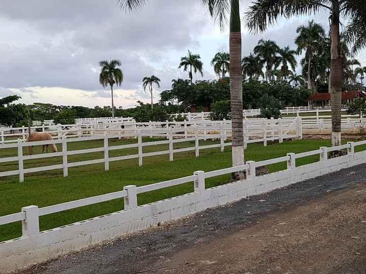 Lua de Mel Punta Cana 24.09 a 1.10 - 4