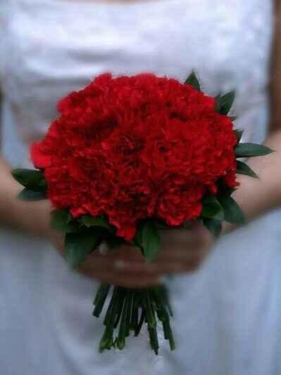 25 de abril é história, é cravo vermelho :) - 6