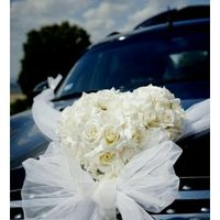 Wedding Car Ajuda !!!! - 1