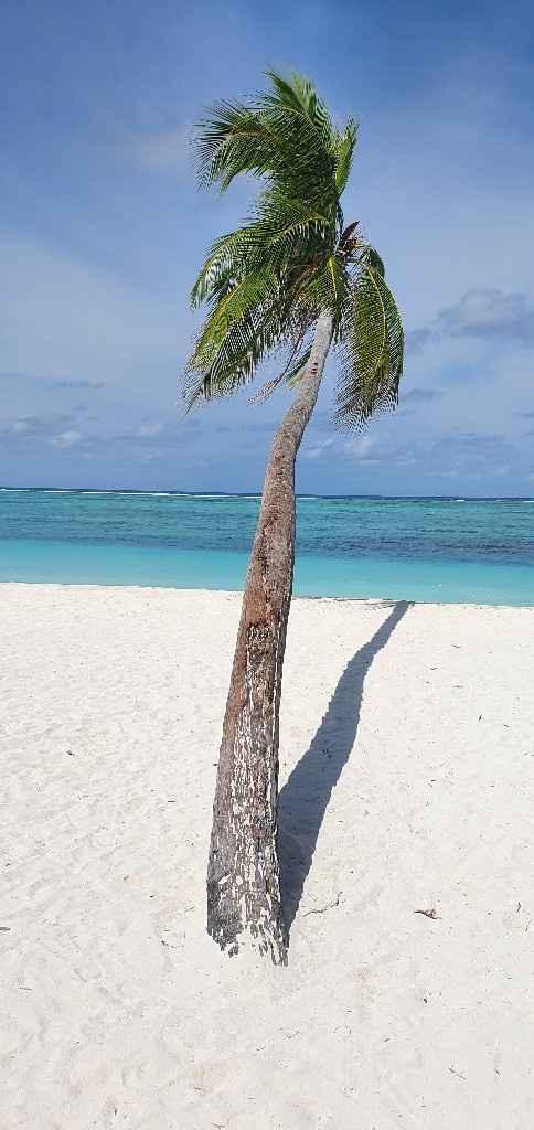 Maldivas em Julho? - 5