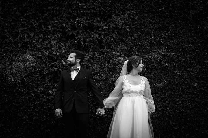 casados 1