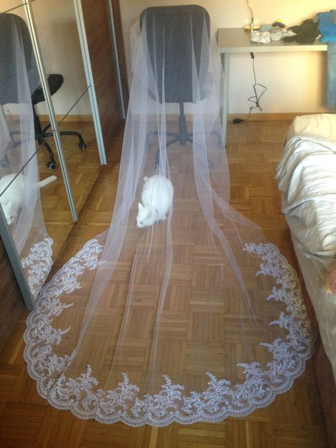 Véu de noiva 7