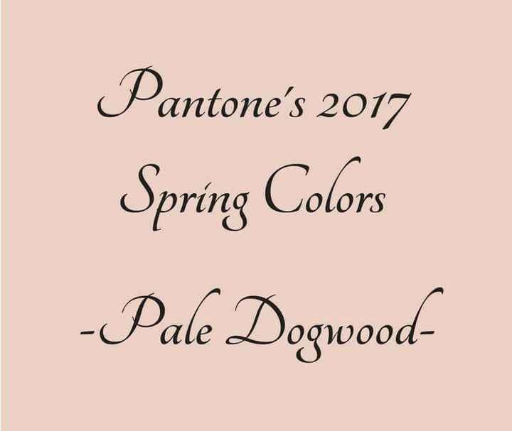 Inspiração - cor pale dogwood - 1
