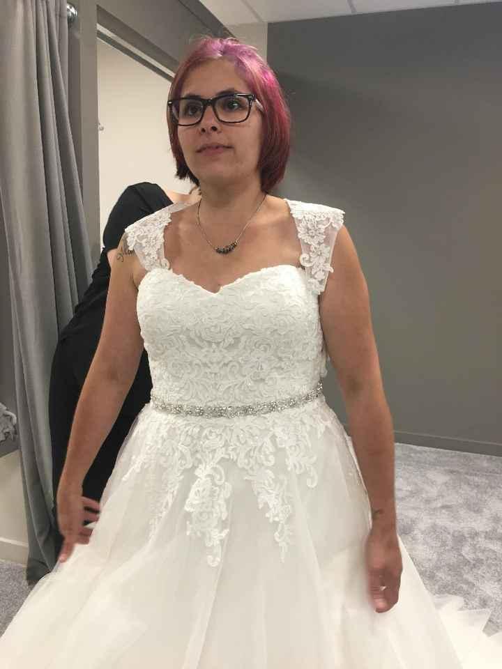 a escolha do meu vestido - 5