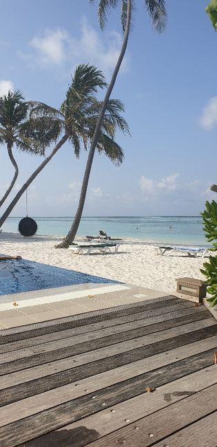 Lua de mel- Maldivas 8