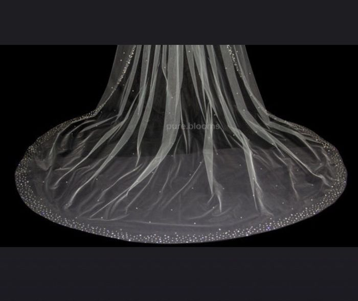o meu véu 3