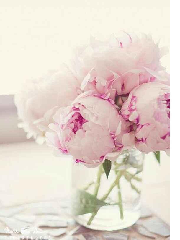 Tipo de flores  escolhido - 1