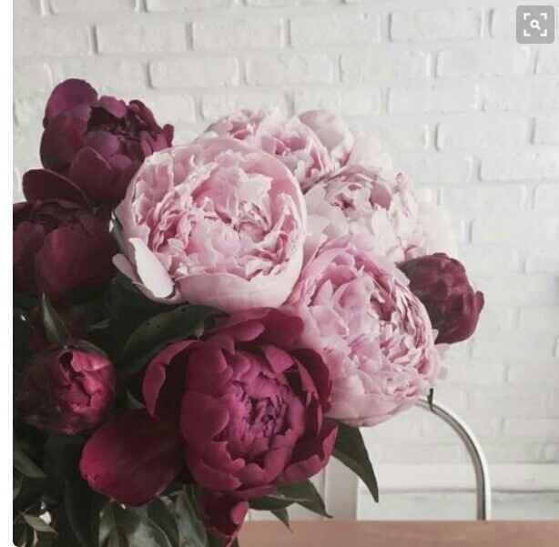 Tipo de flores  escolhido - 2