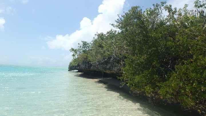 Uma das ilhas - transparência água