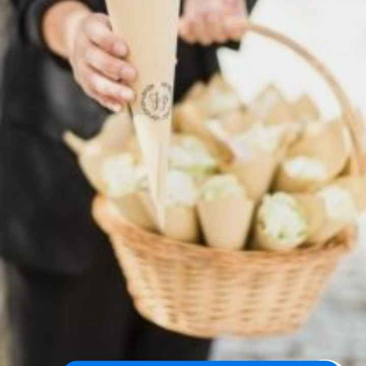 O arroz: em cones ou cestas? - 1