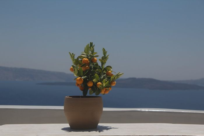 As ilhas gregas de Santorini, Folegandros e Milos 7