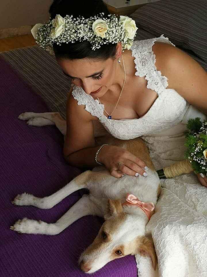 Já casei e foi um dia de sonho - 4