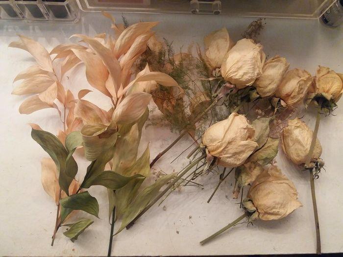 Flores separadas