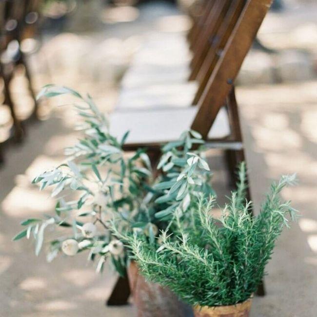 Decorar com plantas de interior 11