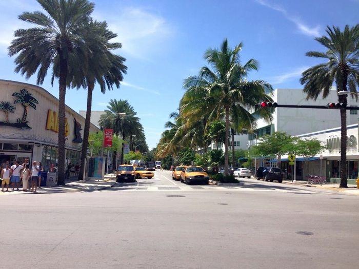 Lincon Road - Miami Beach