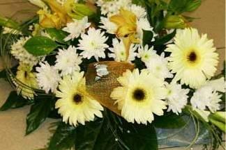 Girassol Alegre - Florista