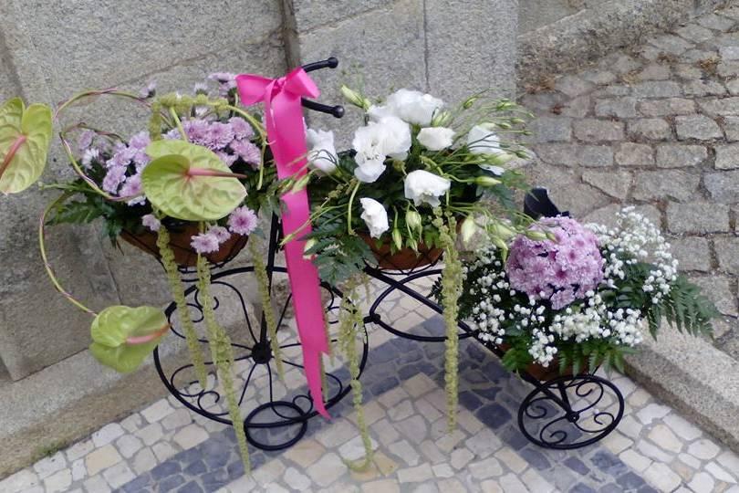Florista Facy