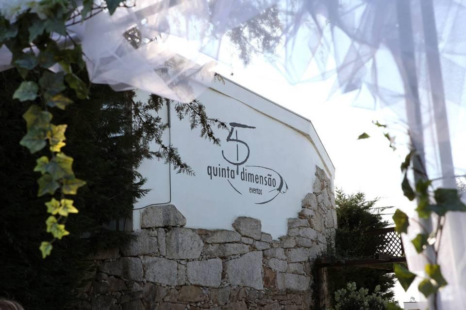 5 D Logo